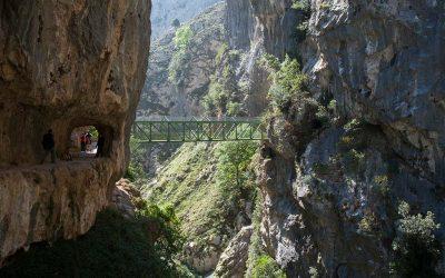 ¿Sabías que León es el territorio del mundo con más Reservas de la Biosfera?