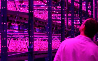 León fomenta el desarrollo sostenible con una Food Computer