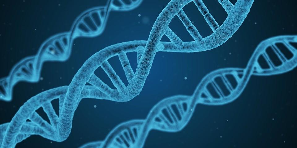 El sector biotecnológico, un mundo de oportunidades en León